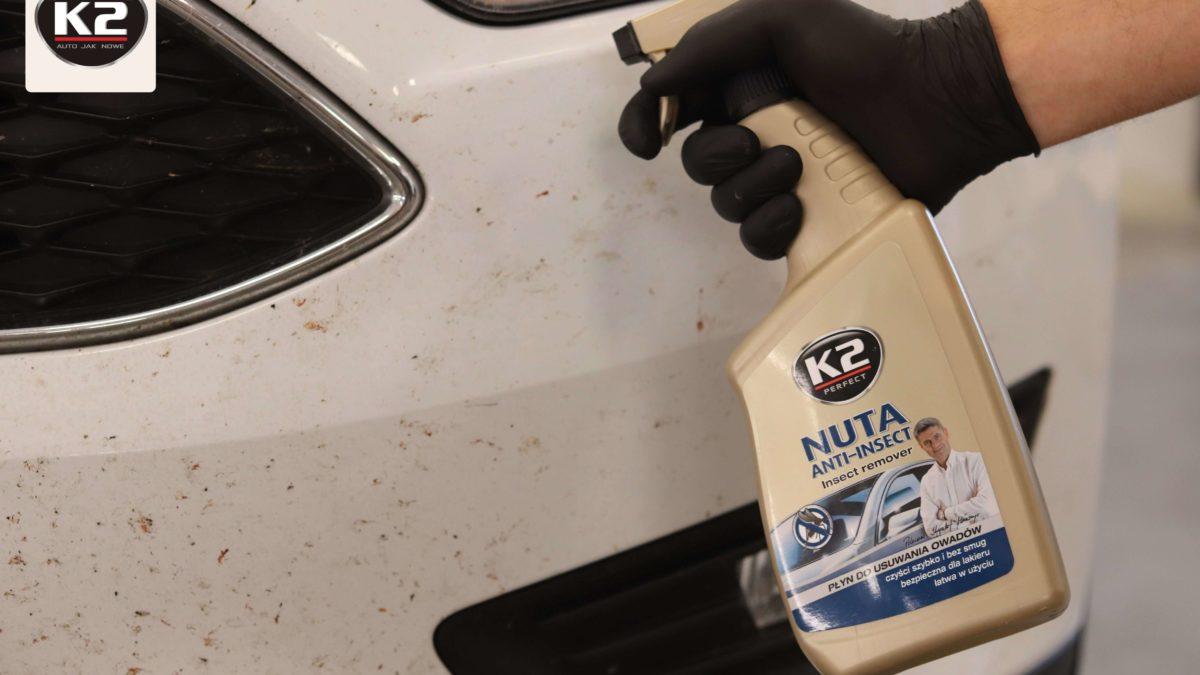 W jaki sposób SKUTECZNIE usunąć owady z karoserii? – wyjaśniamy